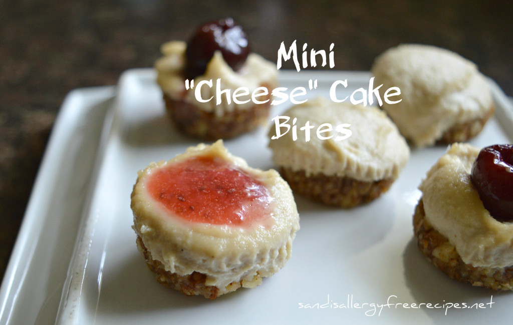 Mini-Vegan-Cheese-Cake-Bites-1024x649